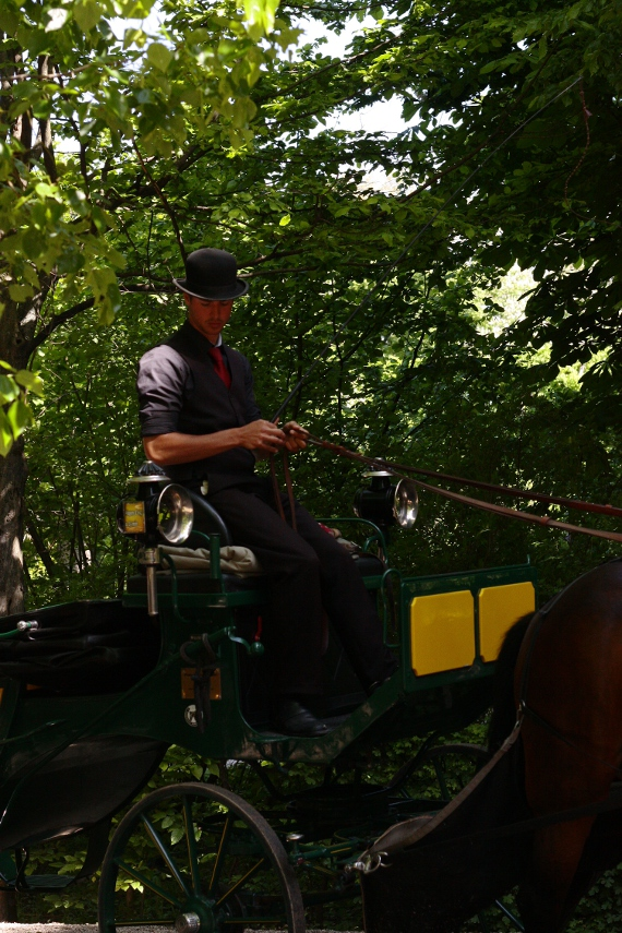 Dorożkarz w ogrodach Schönbrunn