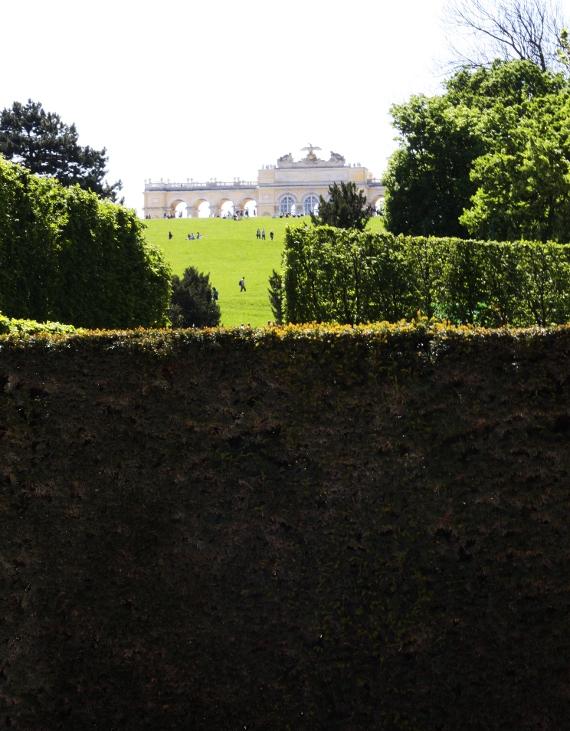 Glorieta w ogrodach Schönbrunn